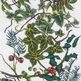 'Winter Berries' Christmas cards